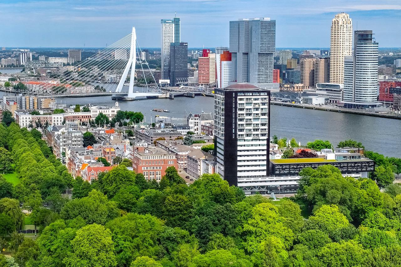 Widok na Rotterdam