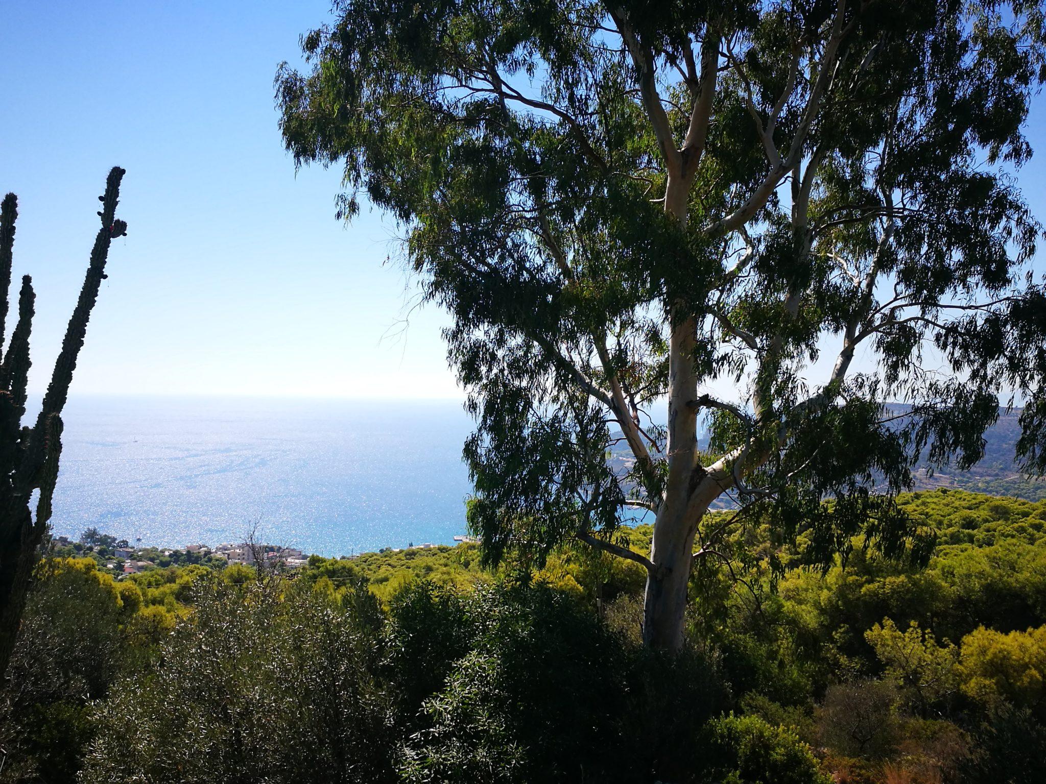 Panorama wyspy od strony świątyni Afai